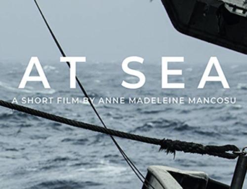 AT SEA – ECFF 2019 Finalist