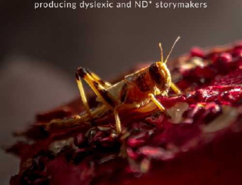 ECFF Supports Dyslexic and Neurodivergent Storymakers